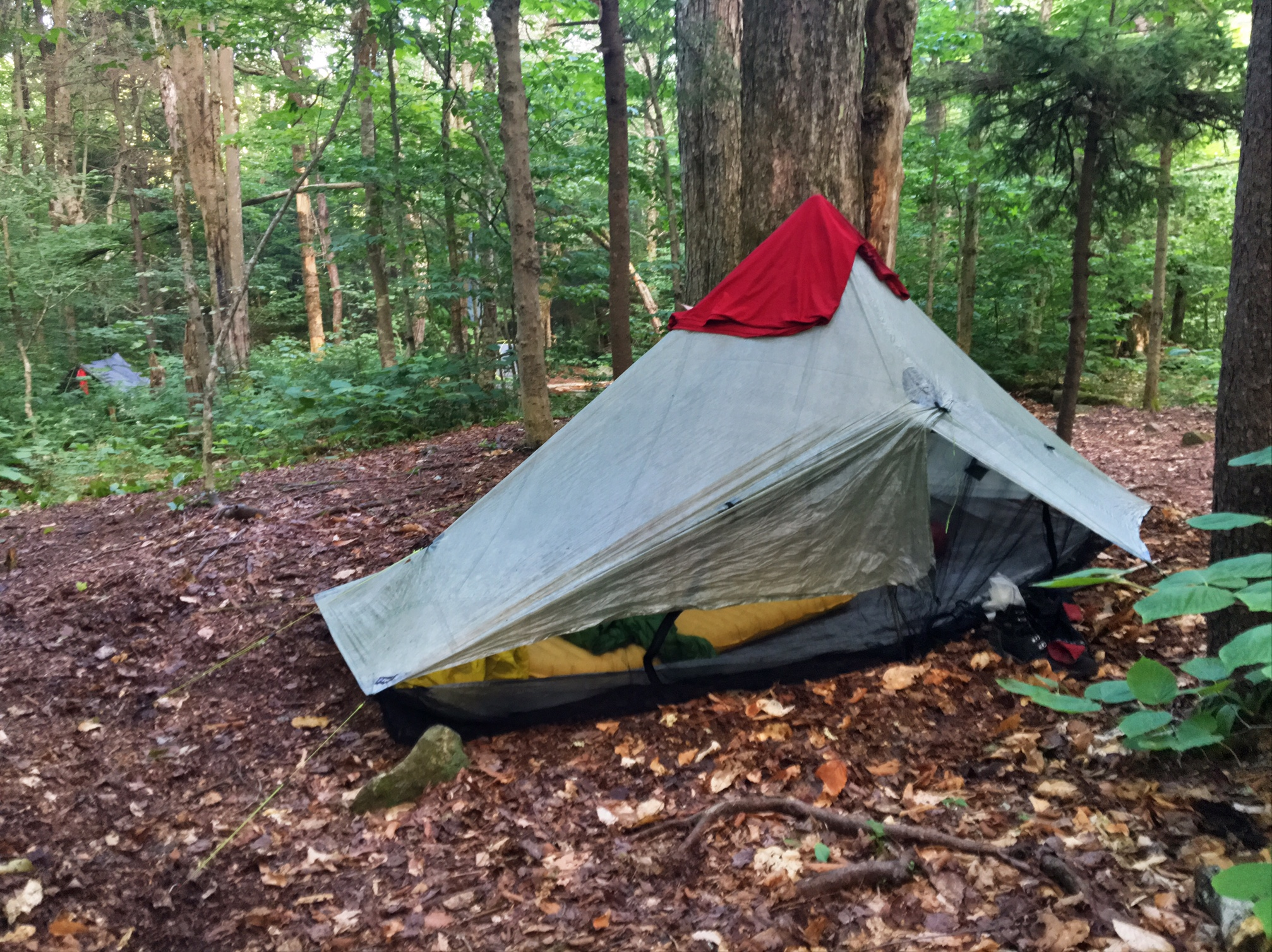 Share this & Zpacks Hexamid Solo Plus Tent Review u2013 GoBugJuice.com